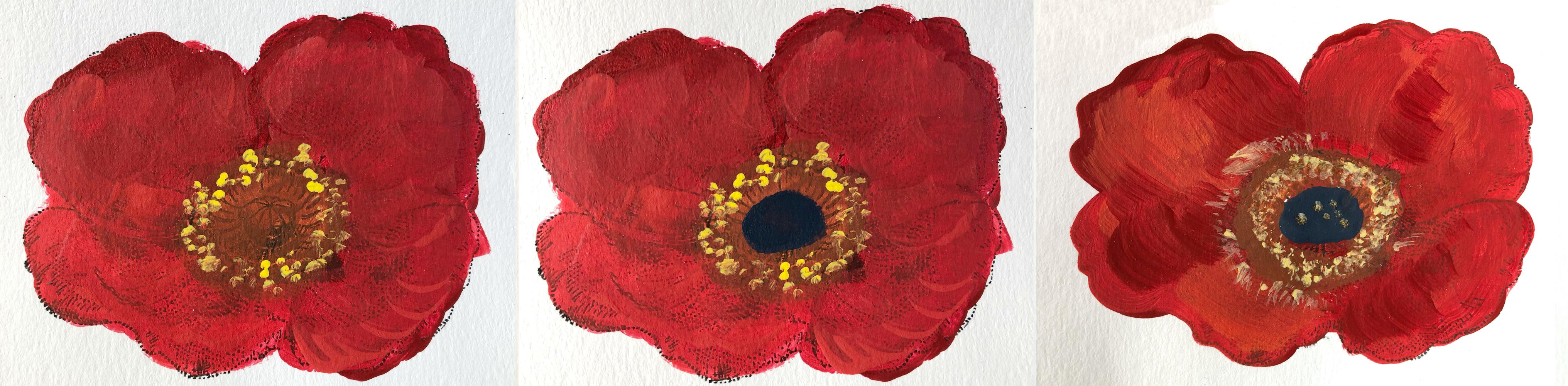 red poppy4-6